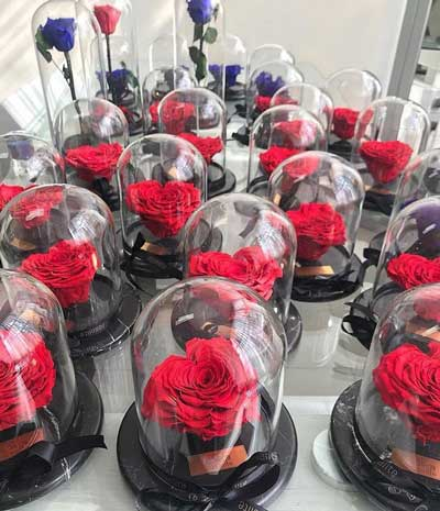 فروش گل رز ۱۵۰ هزار تومانی در تهران!